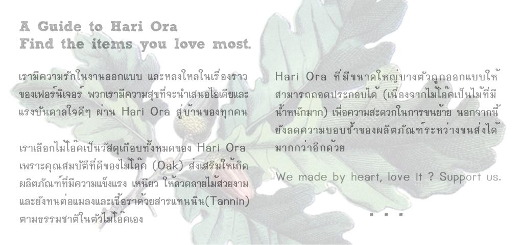 Brochure 09
